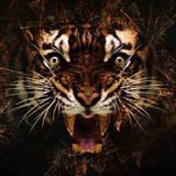 miniature Tigre psychédélique