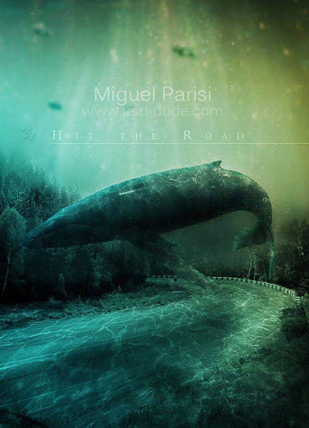 Grosse baleine