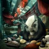 miniature Dessiner un panda