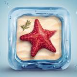 miniature Étoile de mer