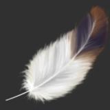 miniature Dessiner une plume