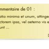 miniature Webdesign commentaires