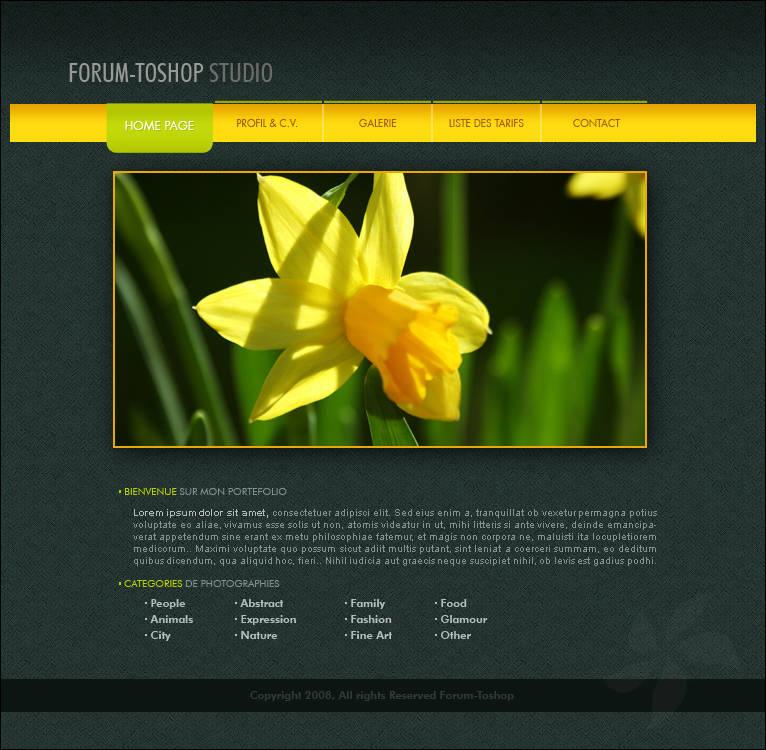 Webdesign d'un portfolio