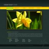 miniature Webdesign d'un portfolio