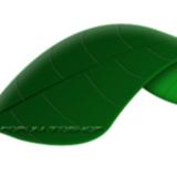 miniature Dessiner une feuille verte