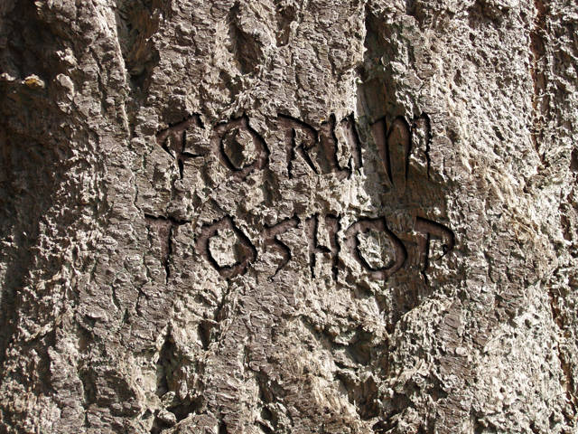 Texte gravé dans la pierre