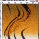 miniature Texture tigre