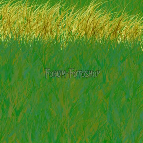 Texture herbe