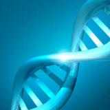 miniature Brin d'ADN en 3D