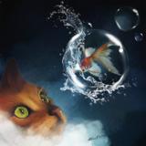 miniature Peindre un splash d'eau avec Photoshop