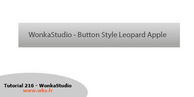 Bouton style Mac OSX Leopard