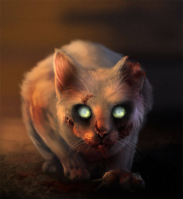 Chat-zombie !