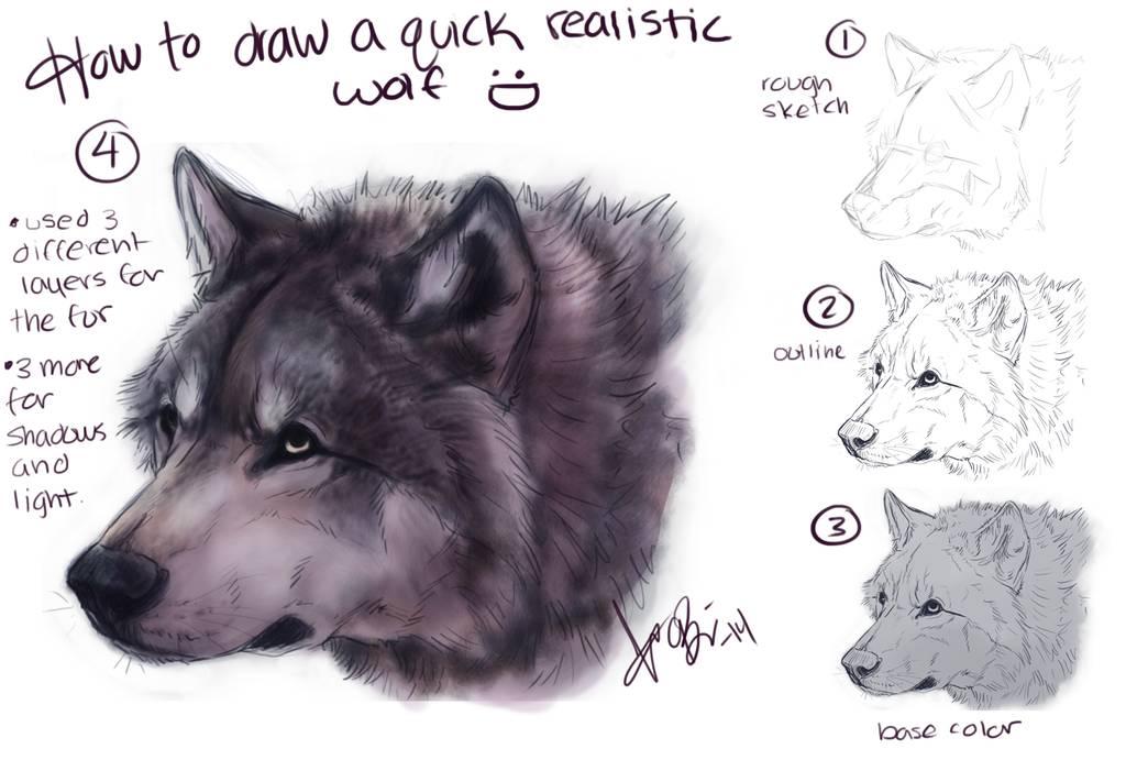 Dessiner une tête de loup