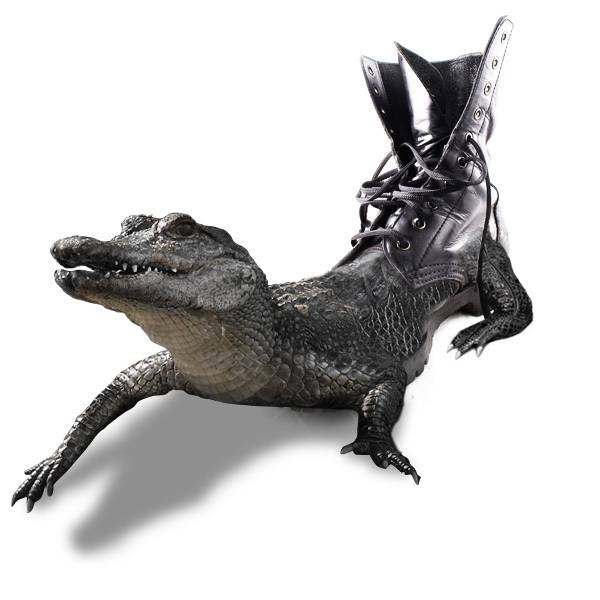 "Photomontage ""botte en croco"""