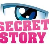 miniature Créer le logo Secret Story