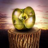 miniature Maison-pomme surnaturelle