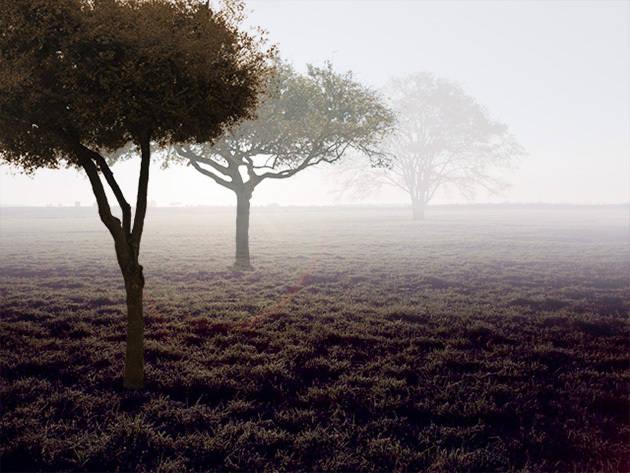 Créer de la brume