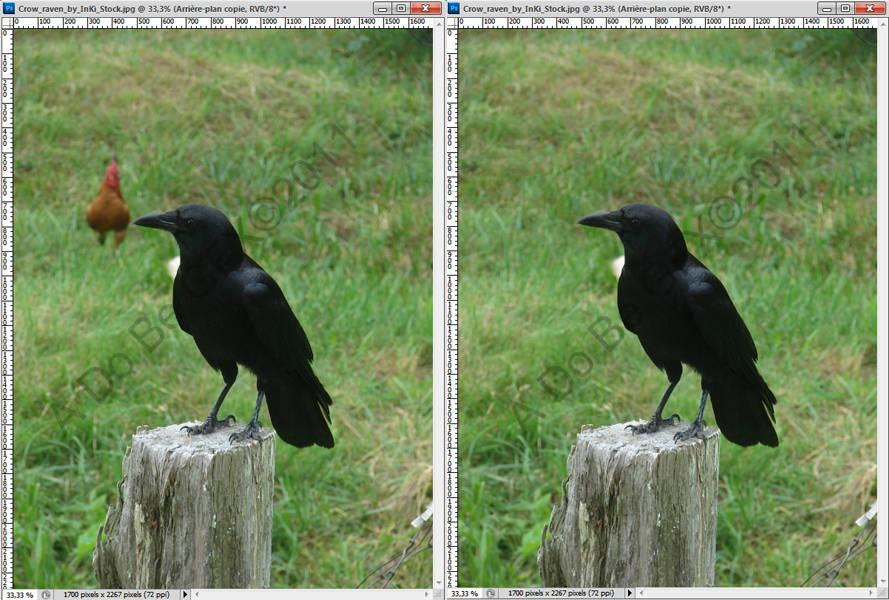 Effacer un élément d'une photo avec Photoshop et la fonction Contenu pris en compte