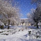 miniature Chute de neige