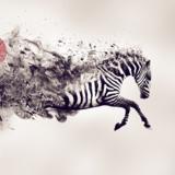 miniature Développer sa créativité avec Photoshop