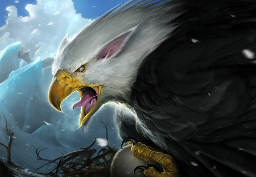 Dessiner un aigle royal avec Photoshop