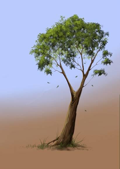 Dessiner un arbre avec Photoshop