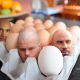 miniature Tête d'œuf