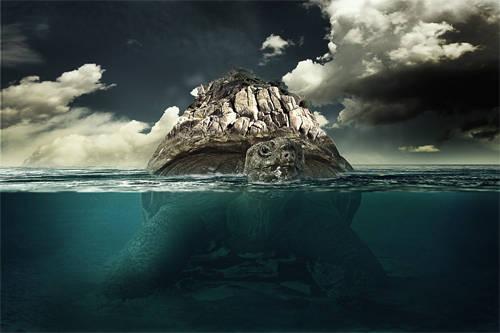 Tortue sous-marine géante