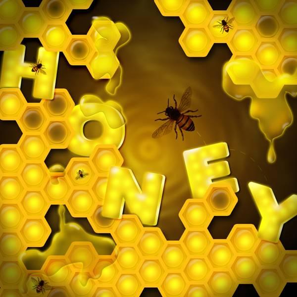 Miel en rayon