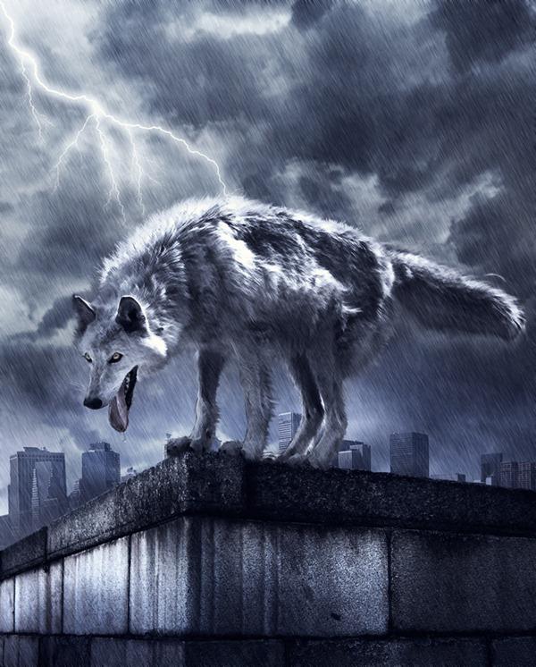 Dessiner un loup géant